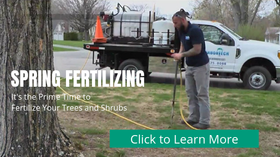 "IT""S TIME FOR SPRING FERTILIZING from ArborTech"